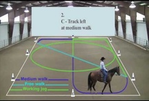 Western Dressage / by Horse Interests