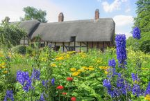 Dreams of an English cottage garden / by Patricia Cook