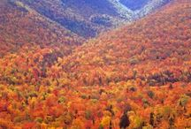 Beautiful Places / by Jodi Bradbury