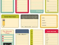 Organization & Cleaning / by Katie {Sweet Rose Studio}