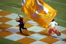 UT VOLS / by Connie Foster