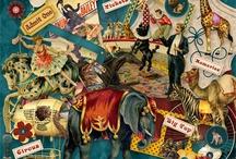 Circus scenes / by Newton Fincham