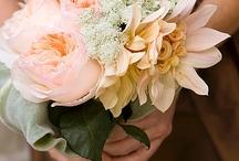 Flowers / by Danielle Rawlins