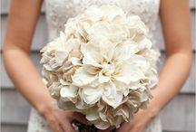 Wedding Season / by Raine Paulson-Andrews
