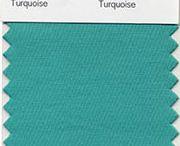 Pantone Turquoise / by Maia Nolan-Partnow