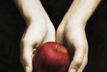Twilight / by Kelly Heddon
