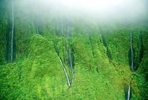 Maui scenery / by Kim Springer