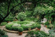 Garden / by Greta Gautreaux