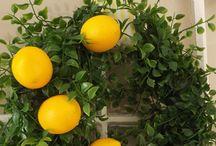 Wreaths / by Julie Diem