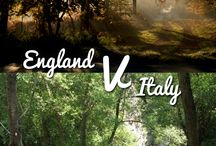 Woodland #WorldCup2014 - Group D / Whether you love or hate football, why not pick your winner in our woodland #WorldCup? We've pitted beautiful woods from all the world cup countries against each other - which is your favourite? / by Woodland Trust