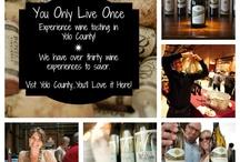 Experience YOLO! / by Yolo County Visitors Bureau