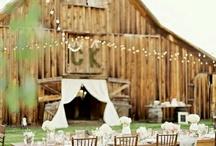 Wedding / by Liz Morgan