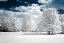 White / by Cristina Borges