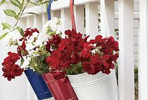 Red, White and Blue Americana by Country Door / ow your patriotism with pride! Celebrate America–indoors and out–with stirring red, white & blue home accents and décor. / by Country Door Catalog