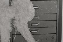 wings / by Tove Andersen