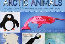 Arctic Animals / by Bernadette (Mom to 2 Posh Lil Divas)