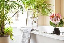 Bathtub loving / by JoAnn Clark