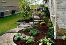 Project Curb Appeal / by Amanda Stone Gundersen