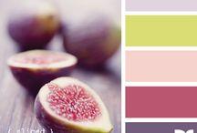 Colors Couleurs y mas Colores / by Ashlea Stanley-Vargas