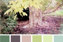 Color Inspiration / by Melissa Hutchison-Blades