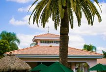 Siesta Key, FL / Siesta Key #1 Beach! / by Tropical Beach Resorts Siesta Key
