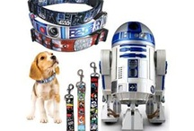 Tech Savvy Pets / by Newegg (Official)