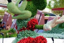 """MouseLand & More / Disney Topiary  """"It has that thing - the imagination, and the feeling of happy excitement - I knew when I was a kid.""""—Walt Disney    / by Barb Miller"""