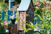 My yard / by Janett Roberts