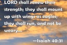 Flight / by Bible Hub