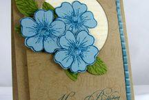 Cards = flowers / by Cindy Lynn