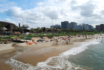 Things I want to do in Durban, SA  / by caroline yorke