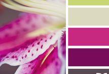 Paint Ideas / by Caitlin K