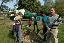 Giving Back With Trees / Davey is proud of its on-going community service efforts across the U.S. and Canada.  / by The Davey Tree Expert Company