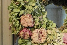 Wreaths for All Seasons / by Elizabeth Arnett Goodson