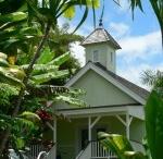 Hawaii Tea Farms / by International Tea Farms Alliance