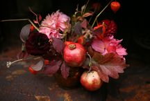 Flowers and Flower Arrangements / by Shelly Penko