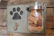 Pets / by Tiffany Baxter