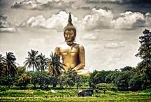 Thailand / by Brian Honigman