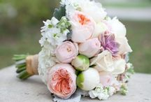 Dream Wedding  / by Malorie Rice