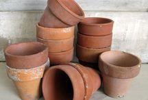 I DIG Gardening / Beautiful gardens and Gardening tips. More inspiration on http://www.brightboldbeautiful.com/ / by Laura Trevey