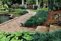 We Love These Landscapes / by Southern Living Plant Collection