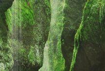Oregon Adventures / by Mary Allen