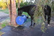 Horse Keeping / Some useful horse keeping tips and info / by Horizon Structures