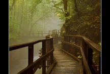 bridges / by Paula McDaniel