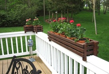 gardening ideas / by Karen Buck