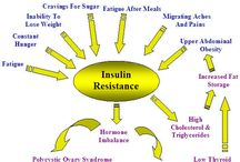Insulin Resistance / by Barb Smith