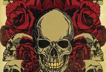 Skulls / by María De Lourdes Pérez