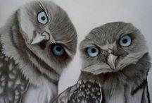 owlies / by Hana Candelaria