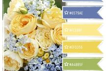 Color inspiration  / by occupationmommy