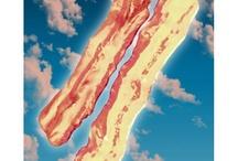 Bacon / by Heather Burditt